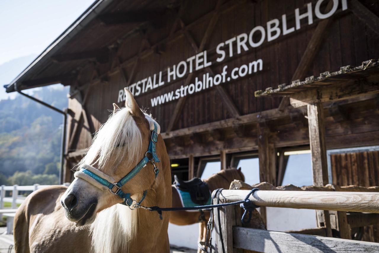 Suedtirol-mit-Kindern.com_Stroblhof Active Familiy Spa Resort