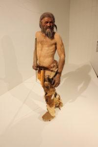 https://suedtirol-mit-kindern.com/suedtiroler-archaeologiemuseum/
